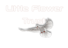 LITTLE FLOWER EDUCATIONAL AND CHARITABLE TRUST